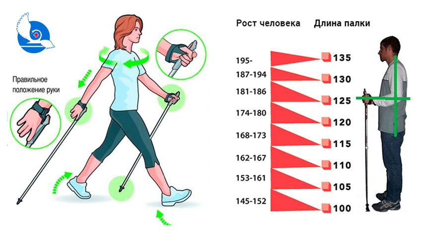 Скандинавская ходьба и диабет: рекомендации