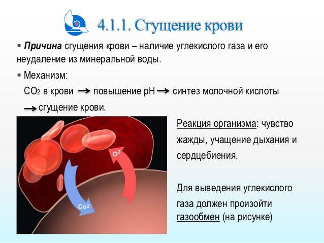 Продукты, которые сгущают и разжижают кровь